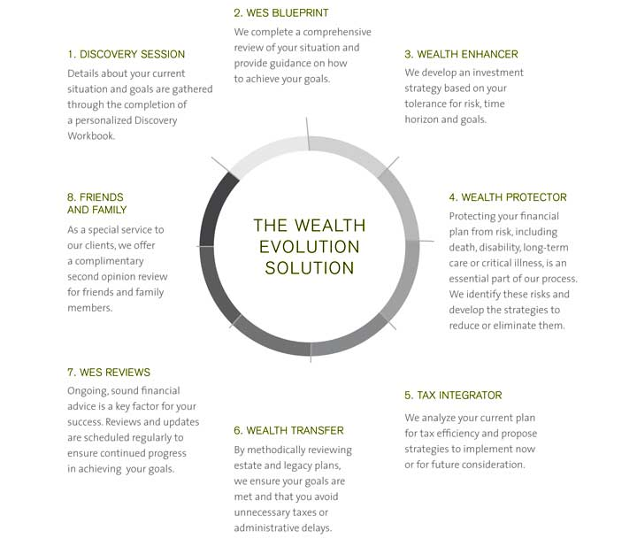 wealth-evolution-solution